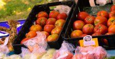 Alton MO Farmers Market
