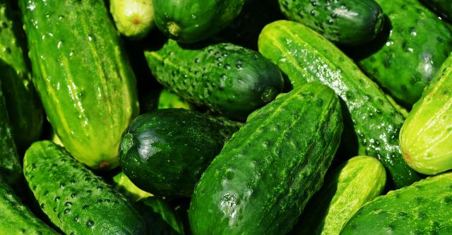 Cucumbers ideas.