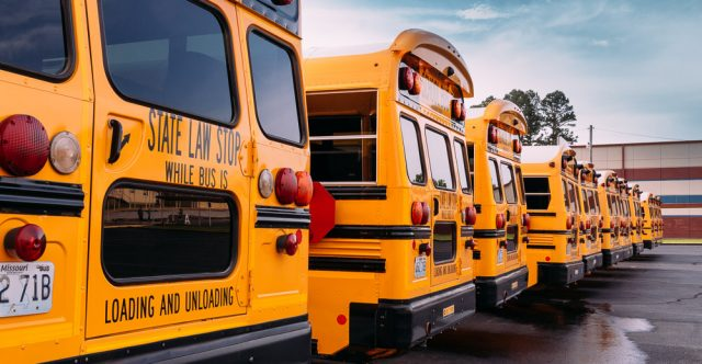 Back to school, school buses