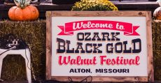 Annual Black Gold Walnut Festival activities.