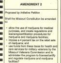 Second constitutional amendment.