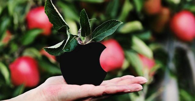 Woman holding an Apple.