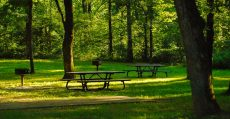Picnic tables at recreational area.