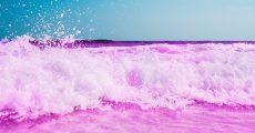 Pink ocean.