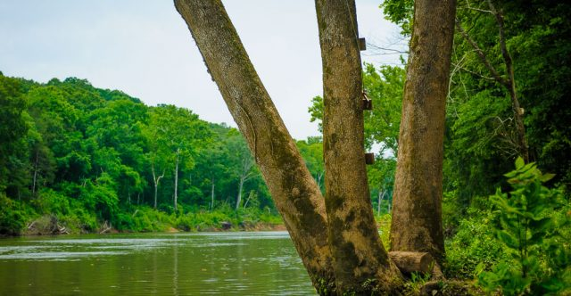 Whitten River Access.