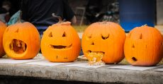 No two pumpkin is the same.