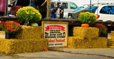 Black Gold Walnut Festival.