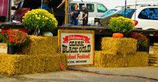 Black Gold Walnut Festival.