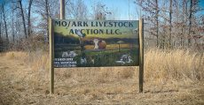 MO/ARK LIVESTOCK AUCTION LLC. sign on highway AA in Alton Missouri.