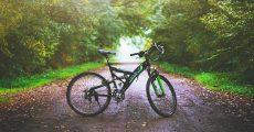 bike on path in woods