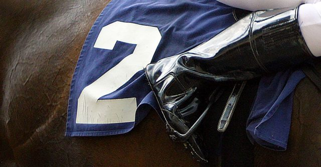 A jockey number on horse