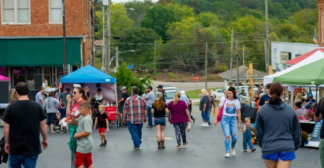 Crowd at the Walnut Festival